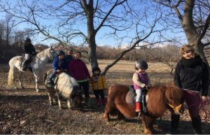 Passeggiata sui pony